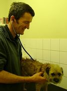 Tenby Veterinary Surgery